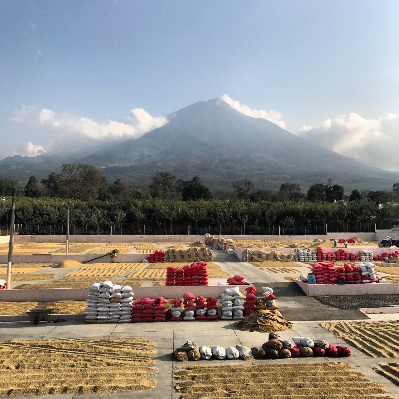 Guatemala Bella Vista Volcan de Fuego