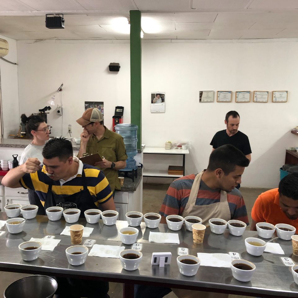 At the cupping table at Fincas Mierisch