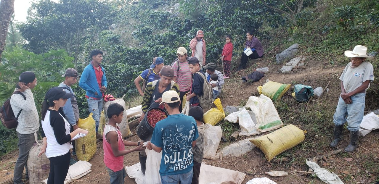 Workers convene on Finca Ruland at the end of the day