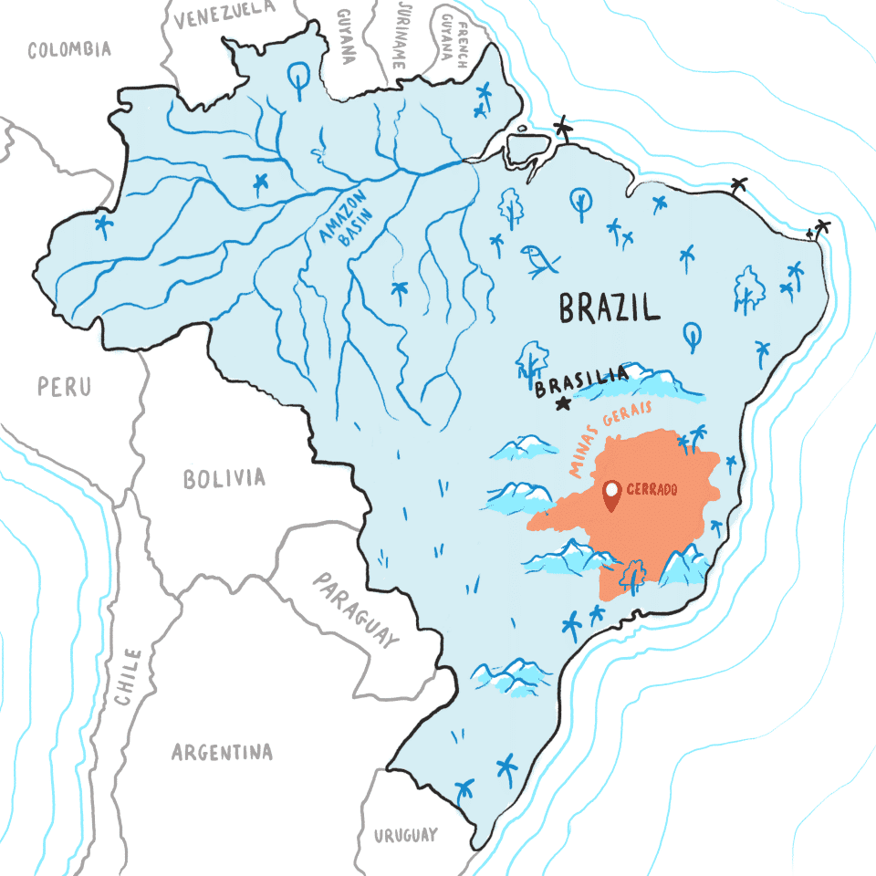 Brazil map, showing Cerrado in the SE portion of country